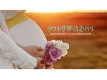 动态孕妇母婴PPT模板免费下载