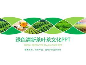 绿色茶园背景的茶文化PPT模板