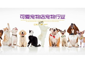 狗狗猫咪排队背景的宠物PPT模板