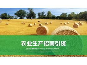 农业丰收PPT模板