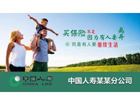 中国人寿保险业务介绍PPT模板