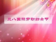 3.8国际劳动妇女节的由来PPT下载